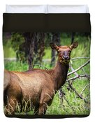 Hungry Elk Duvet Cover