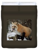 Hungry Fox Duvet Cover