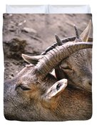 Ibex Mother And Son Duvet Cover