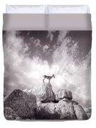Ibex -the Wild Mountain Goats In The El Torcal Mountains Spain Duvet Cover