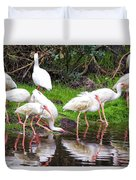 Ibis Reflections Duvet Cover