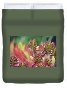 California Red Tip Crassula Ovata Jade Plant Duvet Cover