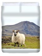 Icelandic Sheep Duvet Cover