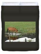 Idaho Farm Horse 2 Duvet Cover
