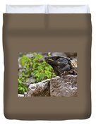 Iguana At Talum Ruins Mexico 2 Duvet Cover