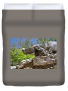 Iguana At Talum Ruins Mexico Duvet Cover