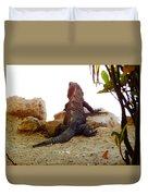 Iguana Watchout Duvet Cover