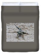 Iguana With A Striped Tail On A Sand Beach Duvet Cover