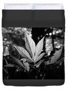 Illuminated Leaf, Black And White Duvet Cover