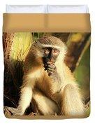 Illuminated Vervet Monkey  Duvet Cover