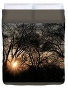 Illuminating Through Trees  Duvet Cover