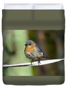 Illusive Female Bluebird Duvet Cover
