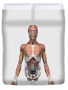 Illustration Of Upper Human Torso Duvet Cover