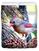 Img_0311 - Northern Cardinal Duvet Cover