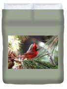 Img_0565-004 - Northern Cardinal Duvet Cover