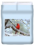 Img_0999-001 - Northern Cardinal Duvet Cover