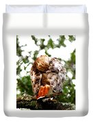 Img_1049-006 - Red-tailed Hawk Duvet Cover