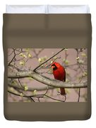 Img_1180-001 - Northern Cardinal Duvet Cover