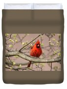Img_1211-001 - Northern Cardinal Duvet Cover