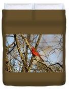 Img_2757-001 - Northern Cardinal Duvet Cover