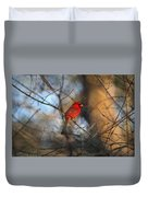 Img_2866-001 -  Northern Cardinal Duvet Cover