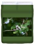 Img_3309 - Ruby-throated Hummingbird Duvet Cover