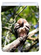Img_7276 - Mourning  Dove Duvet Cover