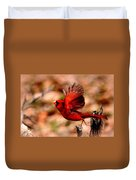 Img_8892 - Northern Cardinal Duvet Cover