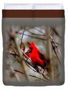 Img_9241 - Northern Cardinal Duvet Cover
