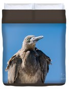 Immature Reddish Egret Duvet Cover