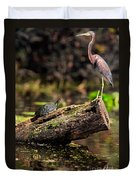 Immature Tri-colored Heron And Peninsula Cooter Turtle Duvet Cover