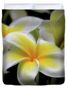 In Love With Butterflies Plumeria Flower Cecil B Day Butterfly Center Art Duvet Cover