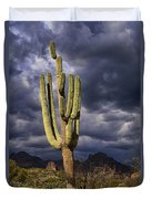 In Search Of That Perfect Saguaro  Duvet Cover