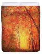 In The Presence Of Light Meditation Duvet Cover