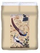 India: Peafowl, C1610 Duvet Cover
