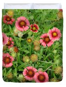 Indian Blanket Flowers Duvet Cover
