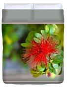 Indian Bottlebrush Flower Duvet Cover