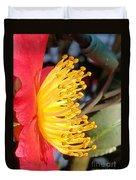 Indian Hawthorn Profile Duvet Cover