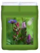 Indian Paintbrush With Beautiful Wildflower Bokeh Duvet Cover