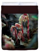 Indian Pipe 5 Duvet Cover