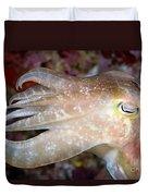 Indonesia, Cuttlefish Duvet Cover