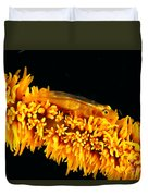 Indonesia, Goby Duvet Cover