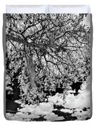 Infrared Indian River State College Hendry Campus #8 Duvet Cover