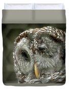 Injured Owl Duvet Cover
