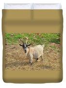 Inquisitive Goat Duvet Cover