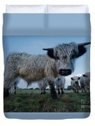 Inquisitive White High Park Cow Duvet Cover