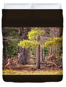 Inquisitive Whitetail Deer Duvet Cover