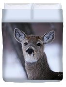 Inquisitive Yearling Duvet Cover