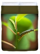 Insect Larva 5 Duvet Cover