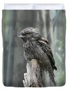 Interesting Tawny Frogmouth Perched On A Tree Stump Duvet Cover